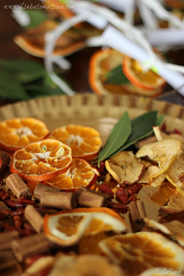 arancia cannella modsit