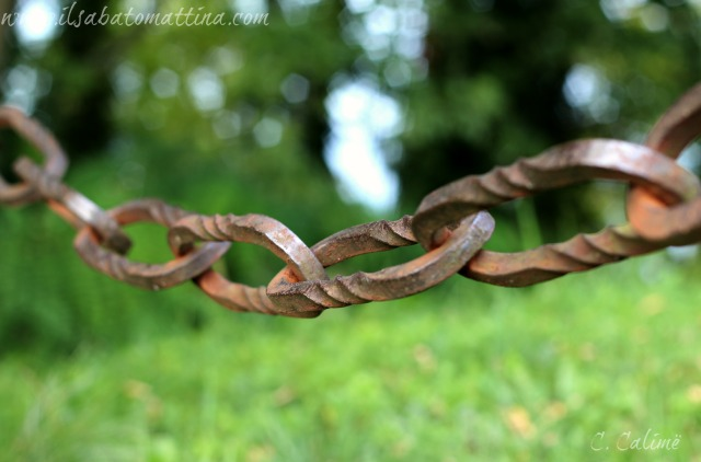 catena modsit