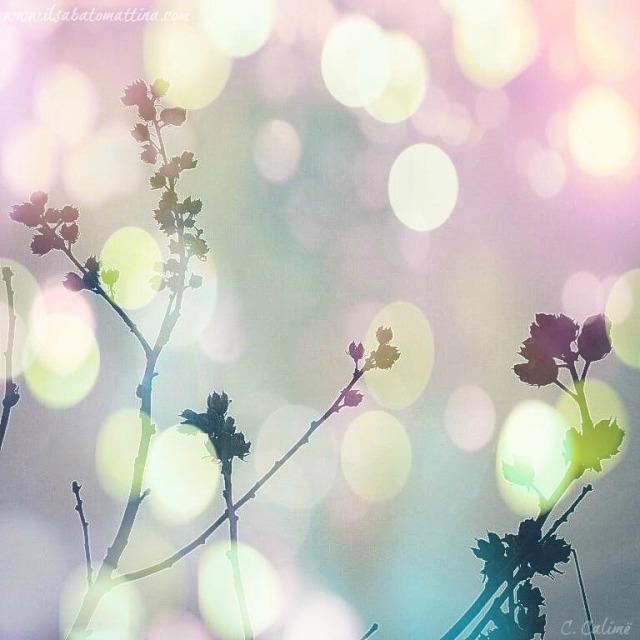 speranza-tranquillita